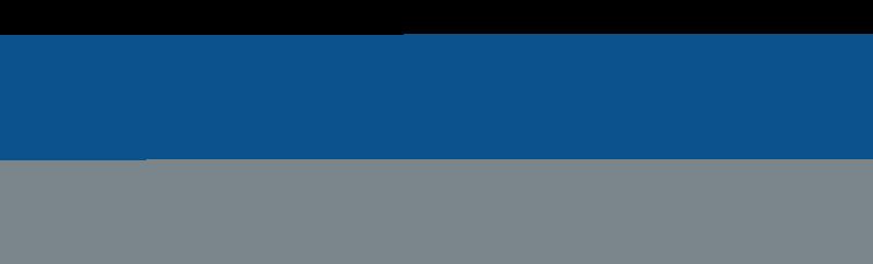 Fulll Swing Transparent logo